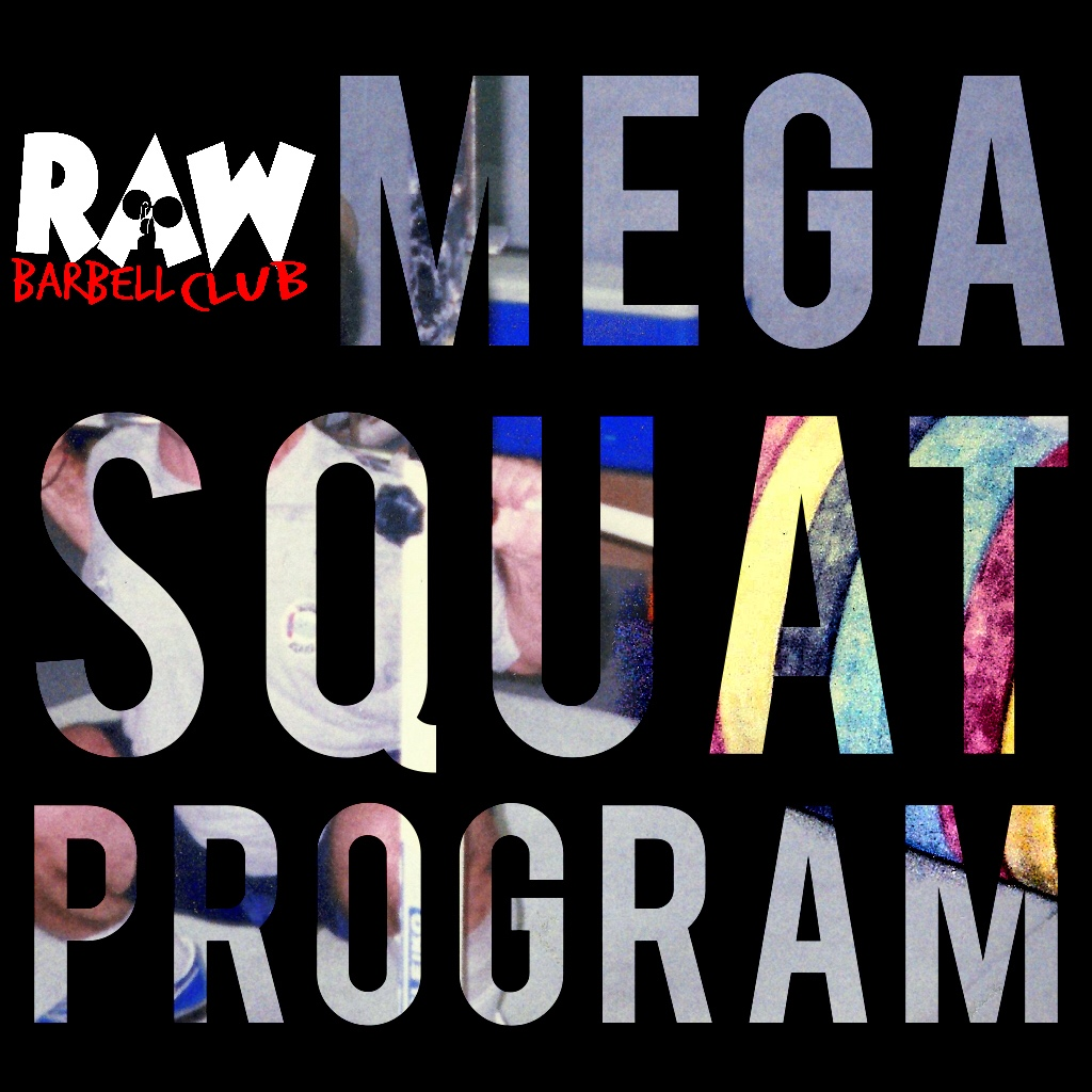 Podcast Episode 8   Squat Every Day, the First 4 Weeks